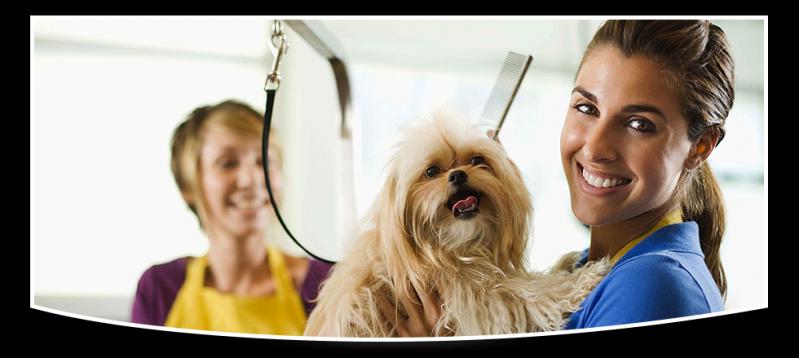 Banho e Tosa Móveis em Raposo Tavares - Banho Relaxante para Cachorro