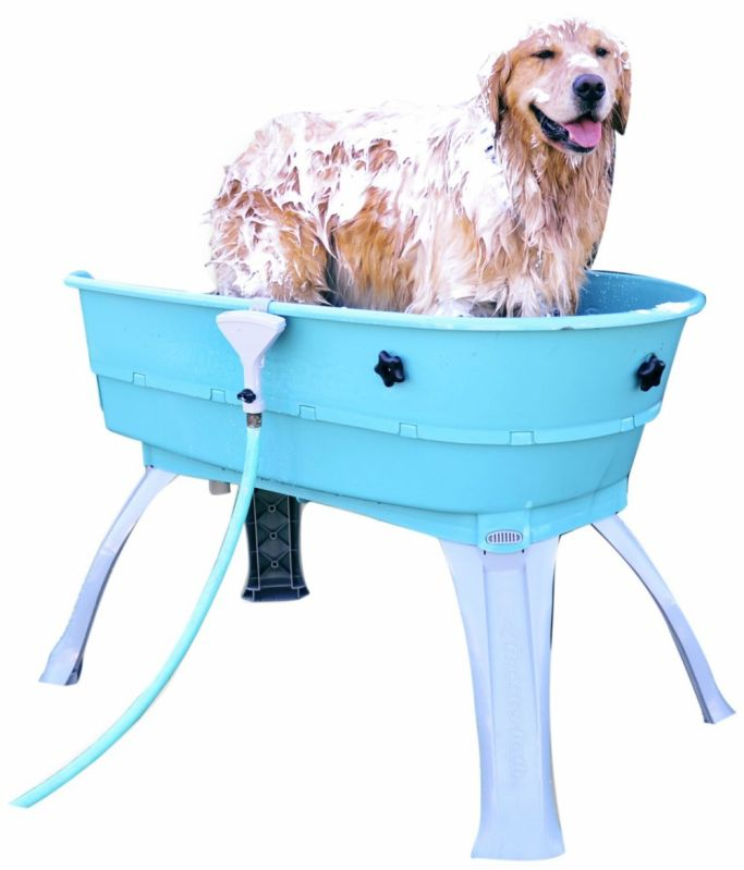 Banho para Cachorro Filhote no Tatuapé - Serviço de Banho para Cachorros