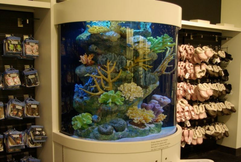 Quanto Custa Aquário para Enfeite de Mesa no Alto de Pinheiros - Aquário para Peixe em SP