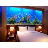 aquário para peixe preço no Morumbi