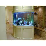 aquário redondo preço no Tremembé