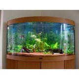 aquário redondo na Água Funda