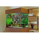 aquários para peixe beta na Vila Mazzei