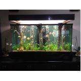 aquários para peixe na Cantareira