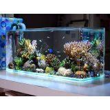 aquarismo online loja no Campo Limpo