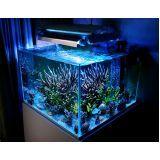 aquarismo online preço na Vila Clementino