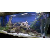 aquarismo ornamental preço em Santana