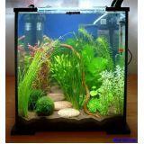comprar aquário para peixe na Anália Franco