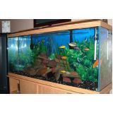 onde encontrar aquário para peixe em SP no Parque do Carmo