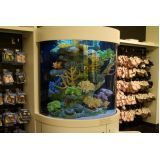 onde encontrar aquário redondo na Vila Dalila