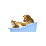 pet shop com promoções no Socorro