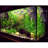 quanto custa aquário para mesa de escritório no Tucuruvi