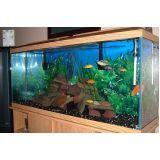 quanto custa aquário para quarto na Anália Franco